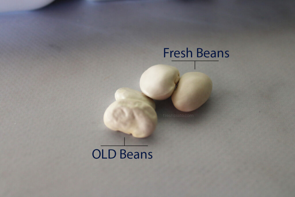 beans ospria